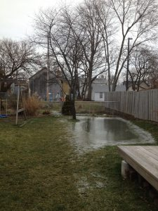 "Our ""seasonal"" pond"